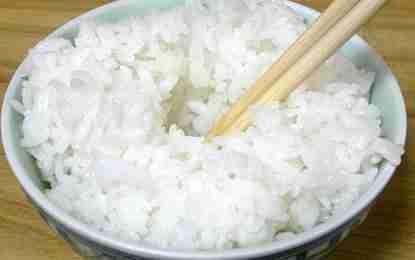 halal rice at japanese airports